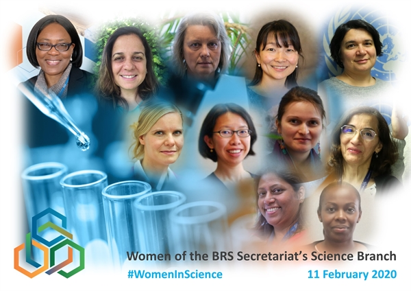 BRS Secretariat supports the International Day of Women and Girls in Science