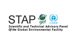 Outstanding independent scientists sought to fill vacancies within the GEF's Scientific and Technical Advisory Panel