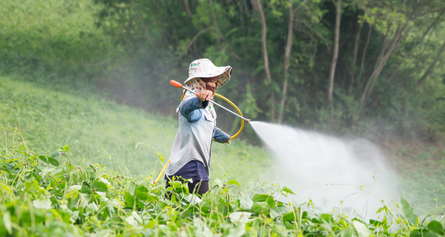 BREAKING NEWS: Scientists recommend listing hazardous pesticides terbufos and iprodione in Annex III of the Rotterdam Convention