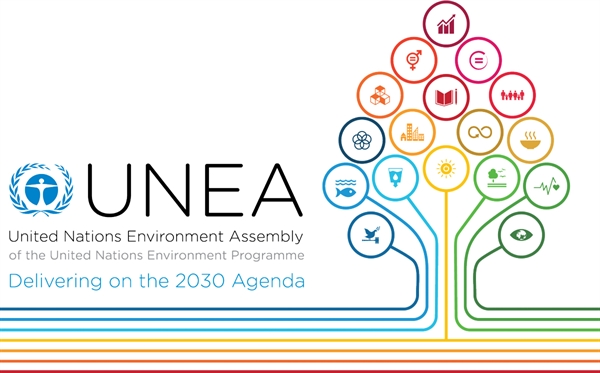 Sustainable management of chemicals and waste at UNEA-2