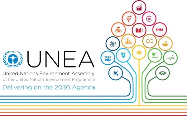 La gestion durable des produits chimiques et des déchets à UNEA-2