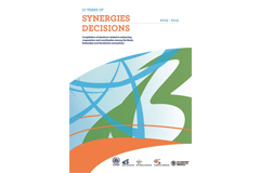 Synergies Decisions document now online