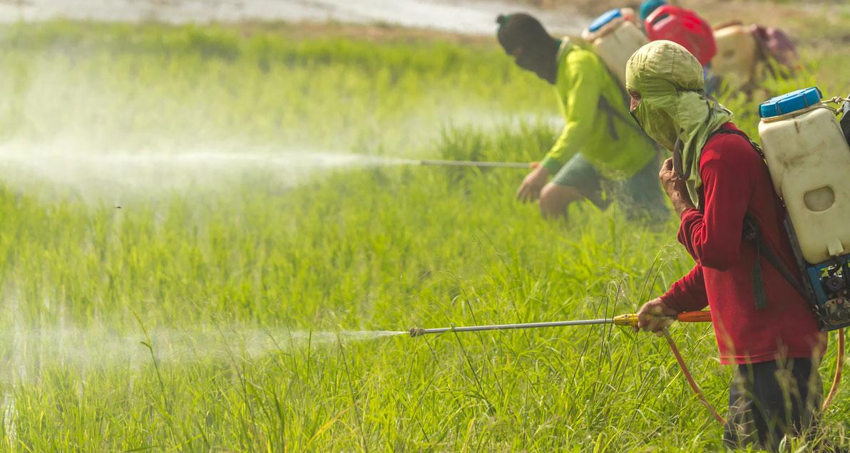 1.6 millones de muertes podrían prevenirse anualmente mediante la gestión racional de productos químicos y desechos
