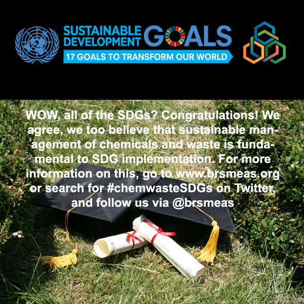 I took the chemicals, wastes and SDGs quiz